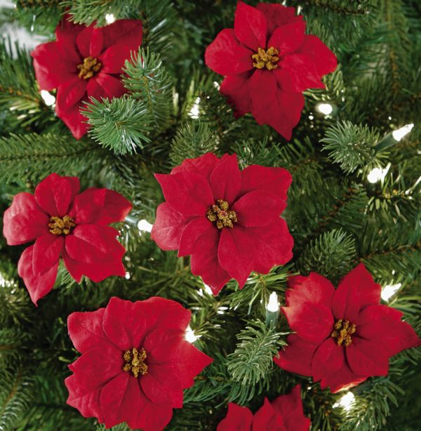 Red Holiday Poinsettia Christmas Tree Clips Christmas