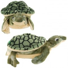 Turtle Slippers for Kids, Women and Men