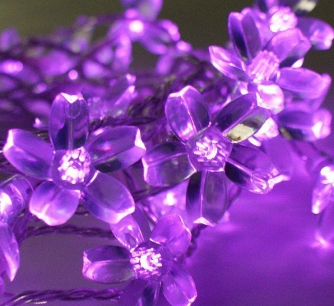 Led Blossom Solar Fairy Lights