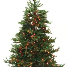 Good Tidings Prince Edward Fir Artificial Prelit Christmas Tree