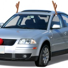 Reindeer Vehicle Costume