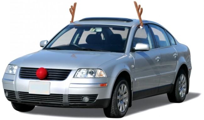 Reindeer Vehicle Costume