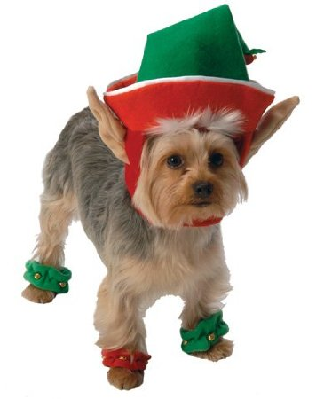 Go Dog Holiday Elf Dog Costume