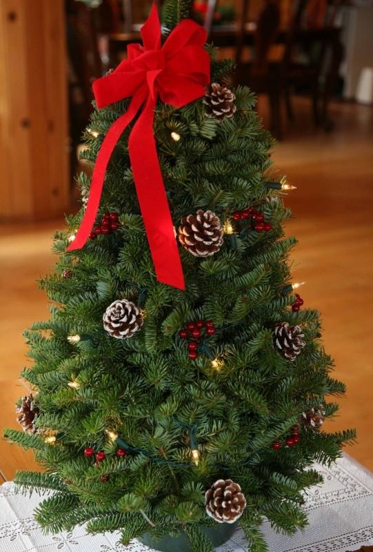 Large Pre-Lit Tabletop Christmas Tree