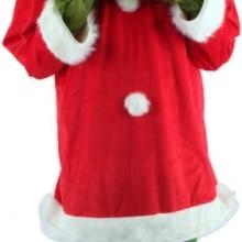 Elope Santa Grinch With Mask
