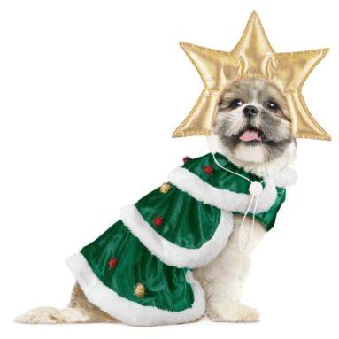 Christmas Tree Dog Christmas Outfit