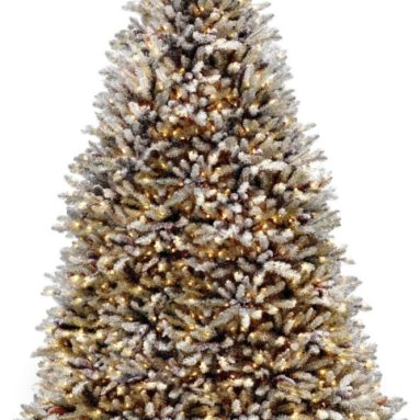 National Tree 9-Feet with Cones and 900 Clear Lights