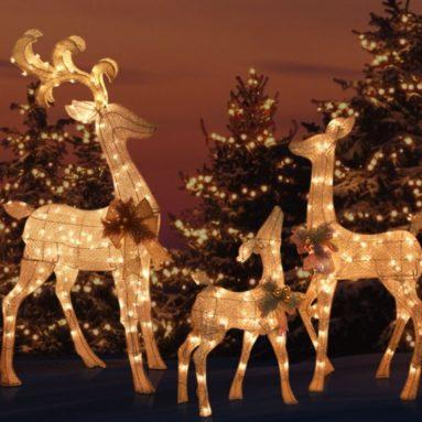 Outdoor Yard Lighted REINDEER FAMILY SET