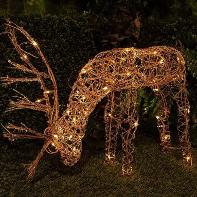 Rattan Reindeer with 50 Halogen Lights