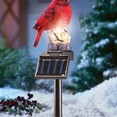 Solar Lighted Cardinal Outdoor Stake