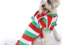 Tipsy Elves Dog Ugly Christmas Sweater