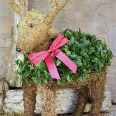 Mossed Ivy Reindeer