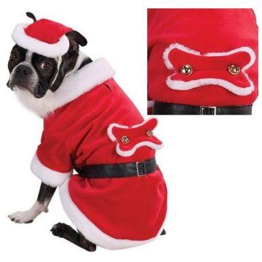 Santa Paws Costume