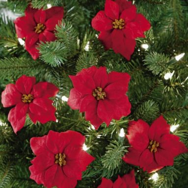 Red Holiday Poinsettia Christmas Tree Clips